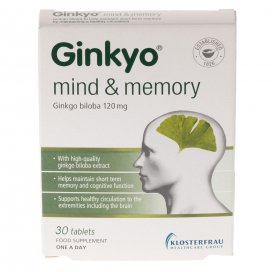 Ginkyo One A Day 30 Tablets
